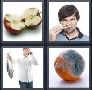 4 Pics 1 Word Answer 6 letters for apple core bad in center, man with stinky sushi on chopsticks, man holding smelly fish, mold on orange