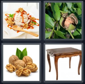 4 Pics 1 Word Answer 6 letters for ice cream with nuts and syrup, tree with nut and leaves, nuts cracked open with leaves, wooden dining room table