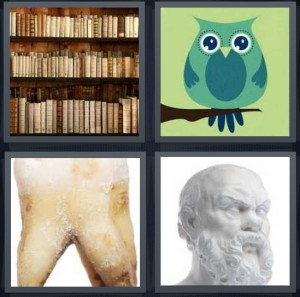4 Pics 1 Word Answer 6 letters for books on shelf in library, green owl on branch, pulled tooth with crush, bust of statue Greek philosopher
