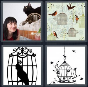4 Pics 1 Word Answer 8 letters for cat sitting on bird with woman, pet bird, parrot shadow inside cage, cage with shadow of a bird