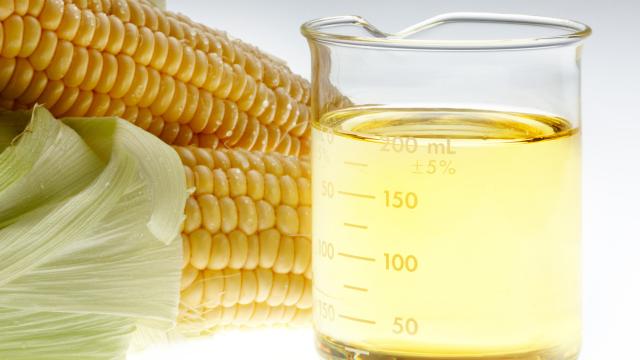 corn oil omega 6