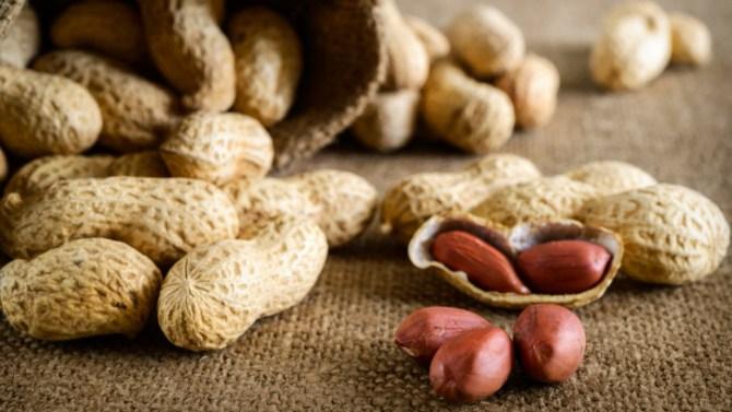 peanuts nursing