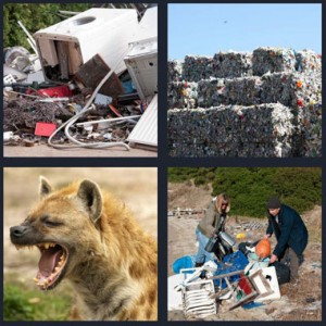 4 Pics 1 Word Answer 8 letters for electronics in trash, stuff from landfill stacked, hyena in wild with teeth bared, couple rummaging through trash