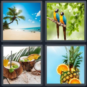 4 Pics 1 Word Answer 8 letters for paradise beach with palm tree, colored parrots in jungle, coconut cocktail with straws, pineapple cocktail with oranges