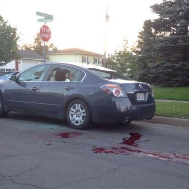 Justin Bourque, Moncton rampage, cop killer