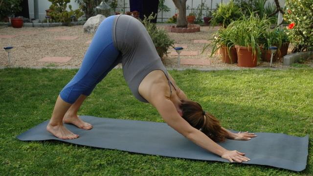 Downward dog back exercise
