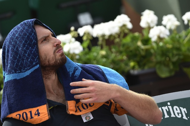 ernests gulbis, french open