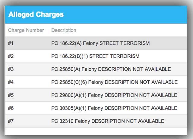 (Screenshot/California Open Reports)