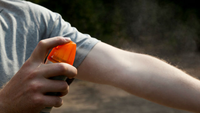 chikungunya prevention
