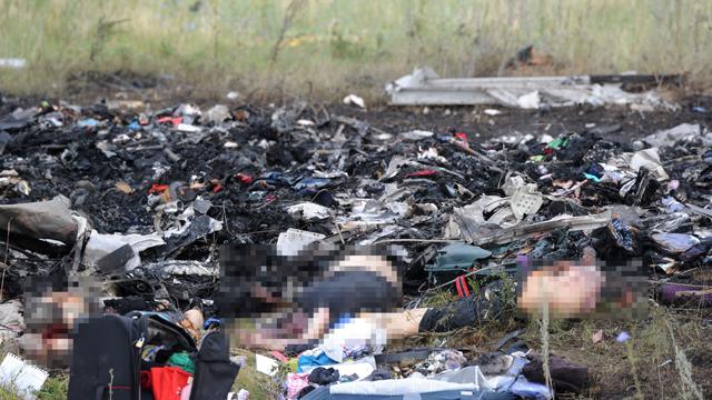 malaysia flight 17 victims, plane shot down in ukraine