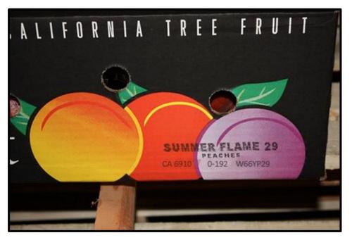 listeria fruit recall (3)