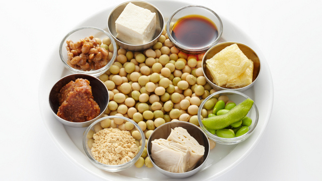 soy protein cholesterol diet