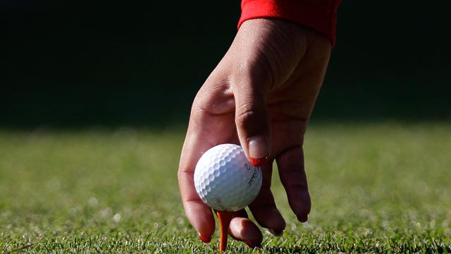 golf cart accessories, golf accessories, golf, pga, pro shop, golf pro shop, golf store, golf stores, golf equipment, golf discount, discount golf, golf gifts