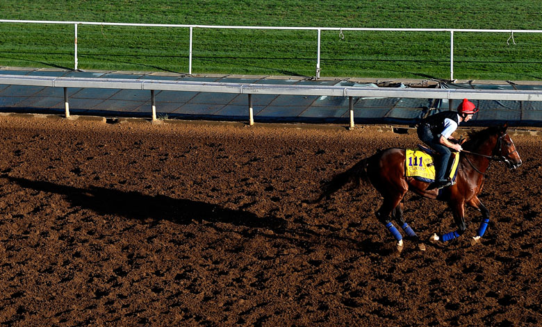 Toast of New York, Breeders' Cup