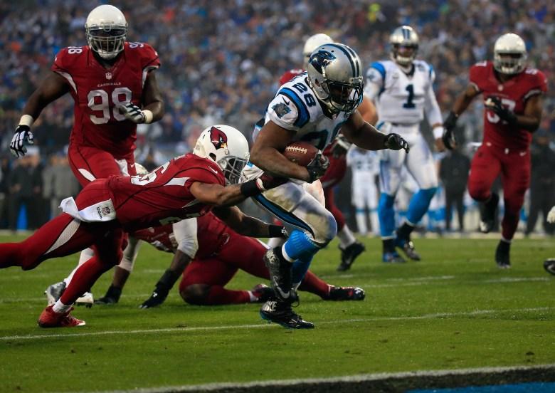 Jonathan Stewart, Panthers vs. Cardinals, NFL playoffs