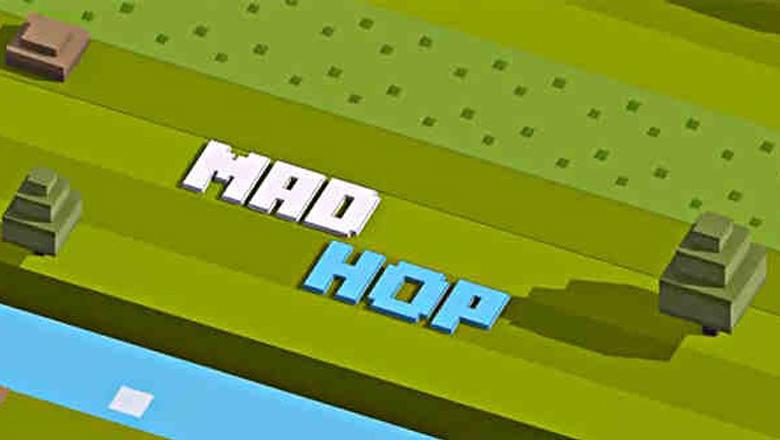 Mad Hop Endless Arcade Game