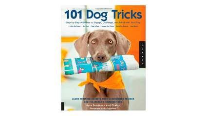 101 dog tricks dog training book