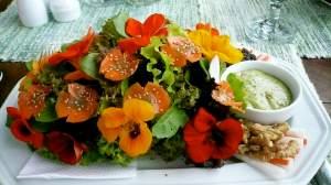 Nasturium Salad