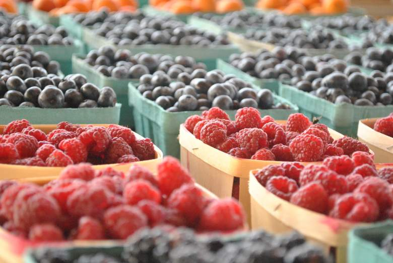 Image of small crates of blueberries and raspberries, best homemade dog food