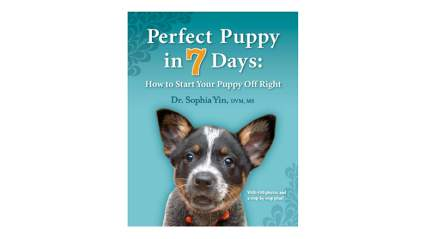 perfect puppy in 7 days dog training book