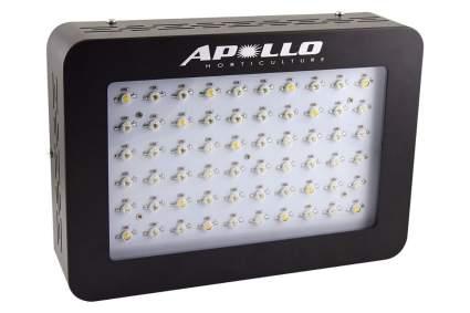 apollo led grow light
