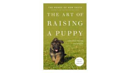 the art of raising a puppy dog training book