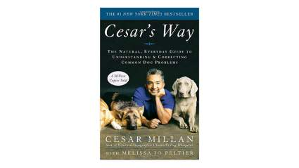 Cesar's way dog training book