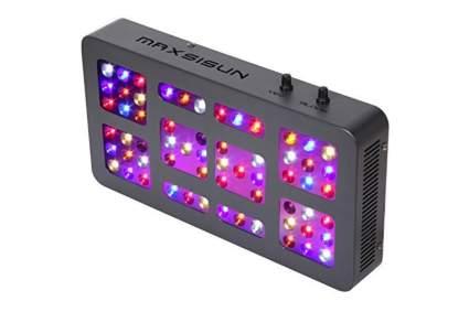 maxisun led grow light