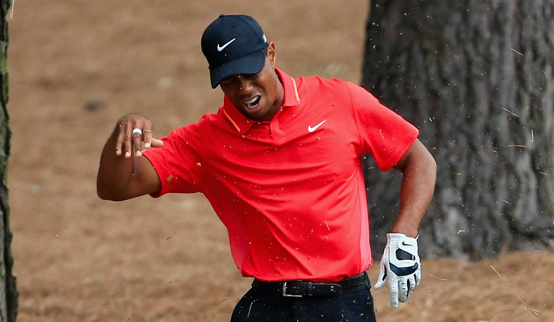 Tiger Woods tosses his club after hitting a tree root on a shot Sunday. (Getty)