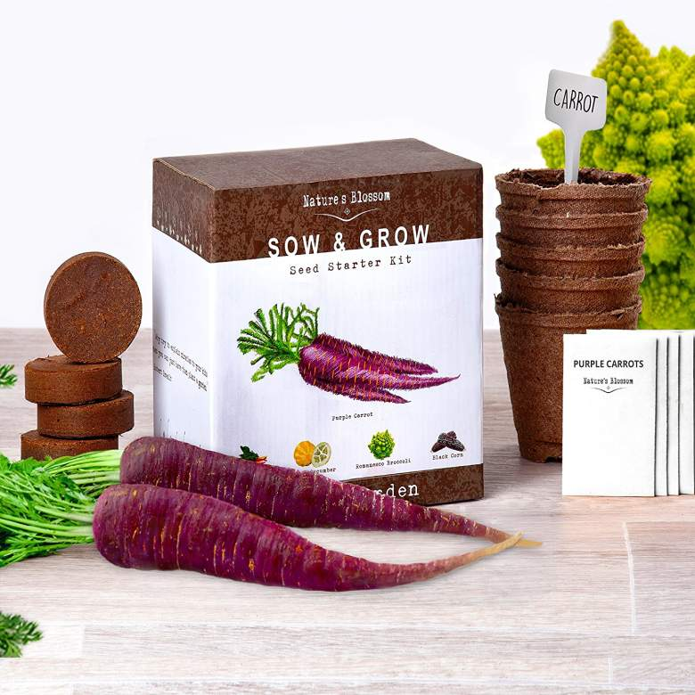 Grow 5 Unique Vegetables with Nature's Blossom Veg Growing Kit. Cool Gift Idea for Men, Women and kids.