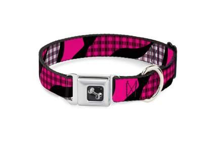 Image of buckle down seatbelt dog collar
