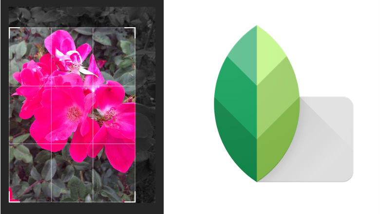 photo editing apps, new picture apps, Instagram photos