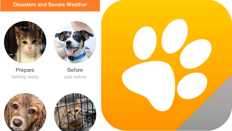 free pet apps, animal apps, cat, dog
