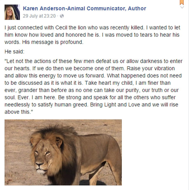 karen anderson, animal psychic, pet psychic, cecil the lion, walter palmer