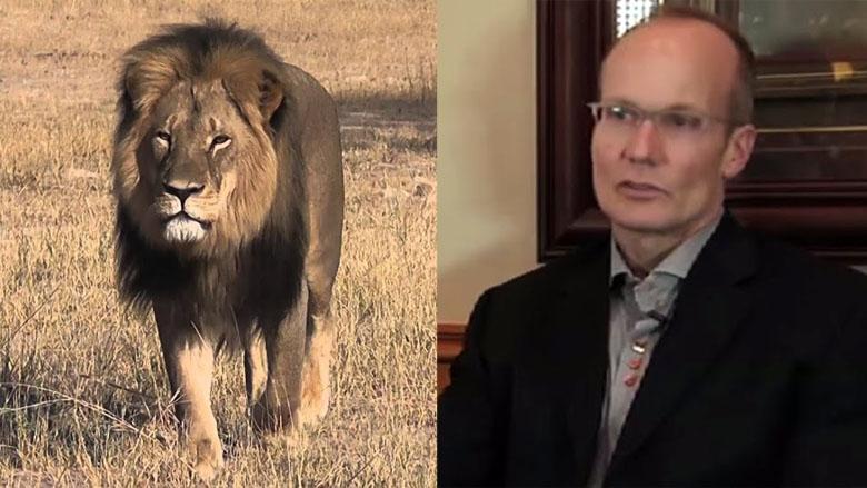Walter Palmer, Cecil the lion, minnesota dentist walter palmer, minnesota dentist cecil the lion