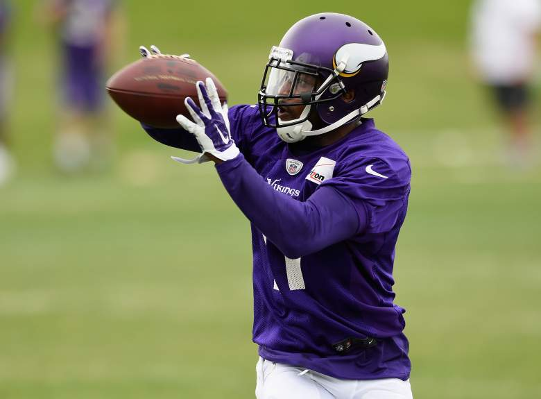 Former Steeler Mike Wallace is now a Minnesota Viking. (Getty)