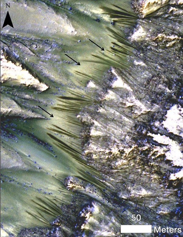 water on mars, #googledoodle, #marsgoogledoodle, mars google doodle