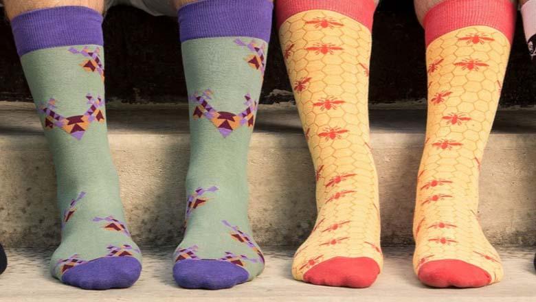 foot cardigan, shark tank socks