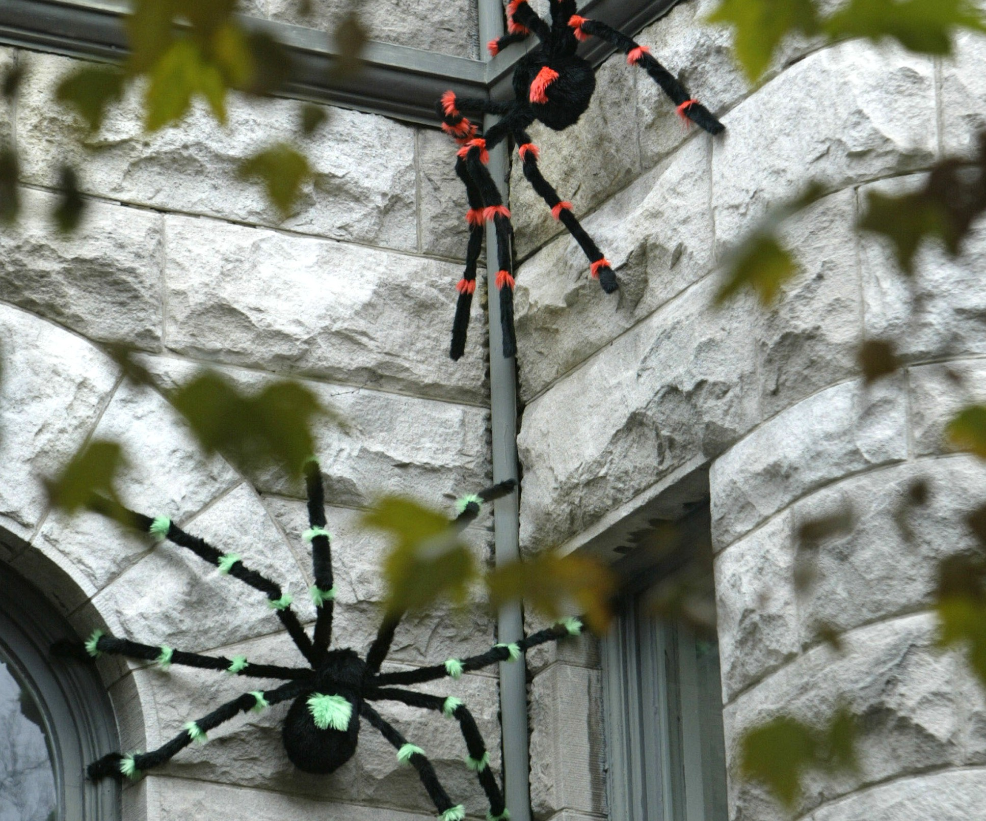 Giant decorative spiders appear to crawl up the front of a home  in Washington, DC. (Getty)