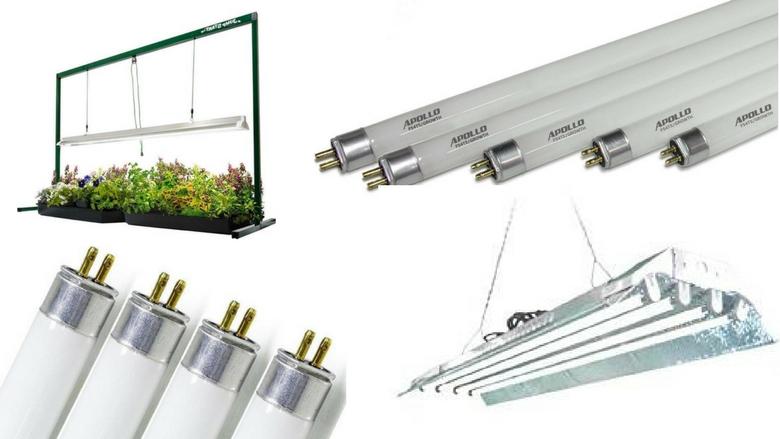 best hydroponic t5 fluorescent grow lights, cfl grow lights, cannabis, marijuana growing lights