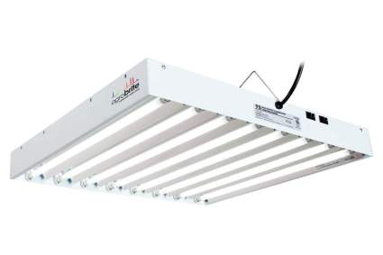 envirogro cfl grow light t5 fluorescent
