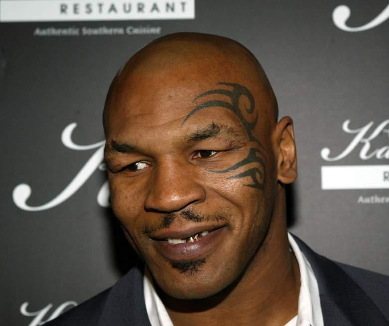 Mike Tyson net worth, Mike Tyson