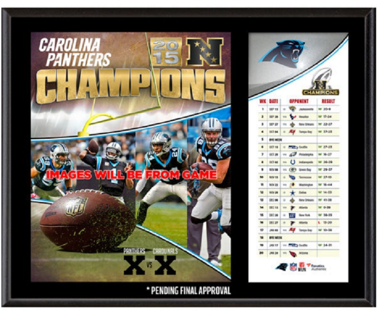 panthers nfc champions gear