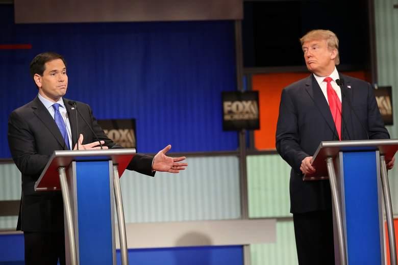 Donald Trump polls, Marco Rubio polls, Donald Trump New Hampshire, Marco Rubio New Hampshire