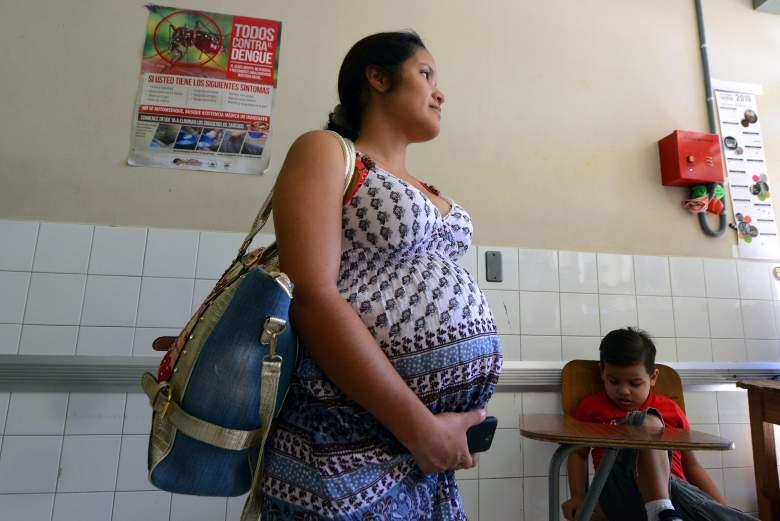 zika virus, zika pregnancy