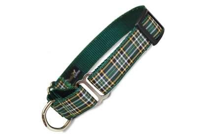 artful canine irish tartan luxury dog collar