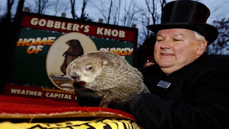 groundhog day livestream, groundhog day ceremony online