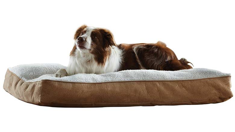 large pet beds for sale
