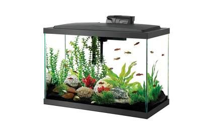 Image of aqueon fish tank