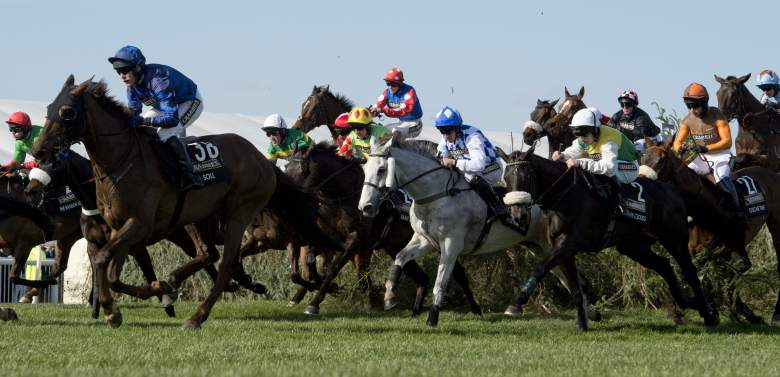 Grand National, odds, horses, runners, field, full list, prediction, pick